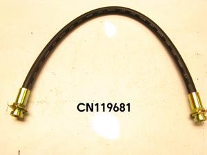 CN119681