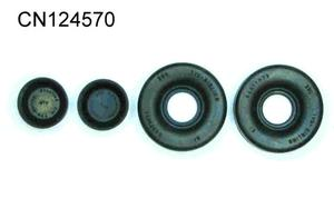 WHEEL CYLINDER REPAIR KIT